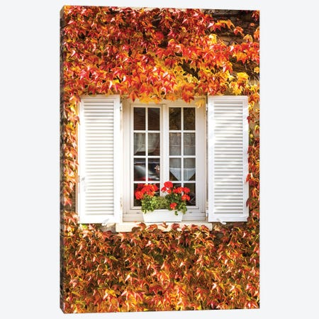 Window And Autumnal Vines Canvas Print #TEO457} by Matteo Colombo Canvas Wall Art