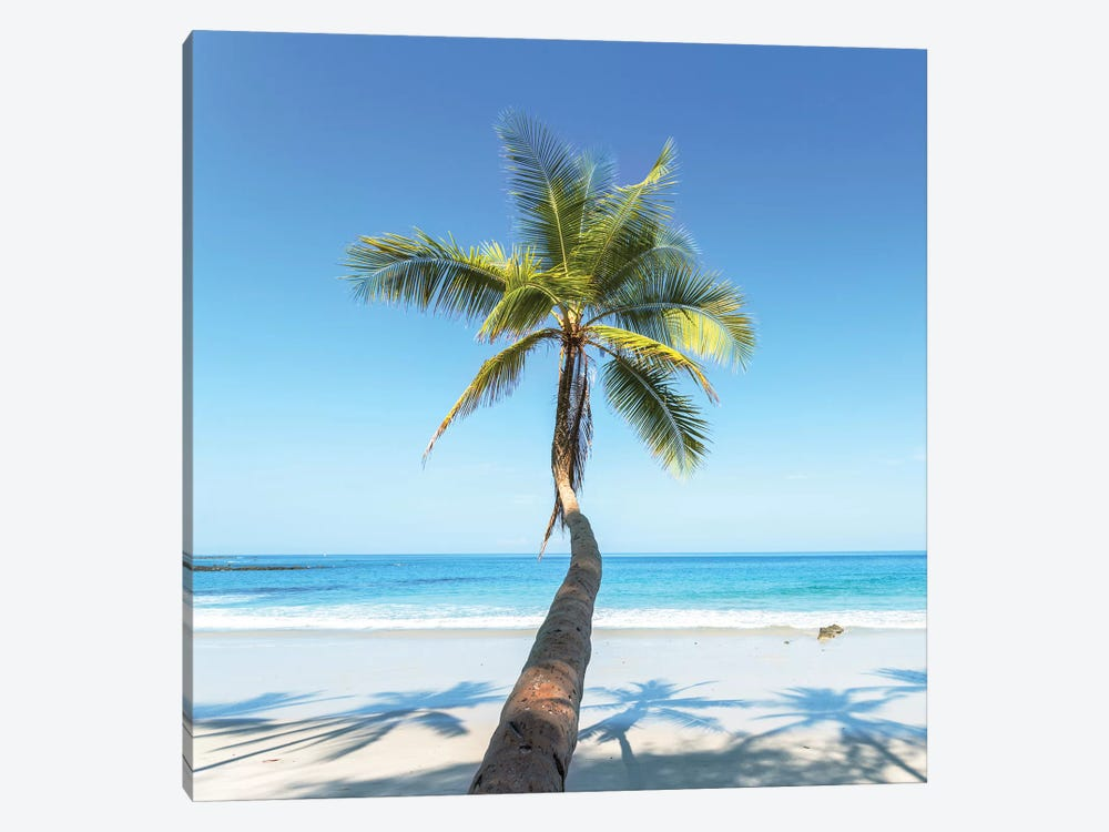 Beach In Costa Rica by Matteo Colombo 1-piece Canvas Art Print