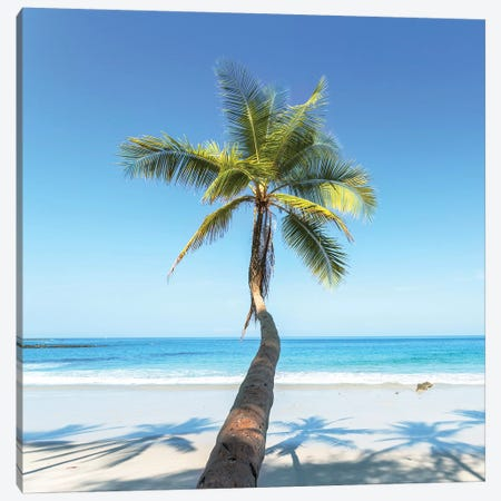 Beach In Costa Rica Canvas Print #TEO466} by Matteo Colombo Canvas Print