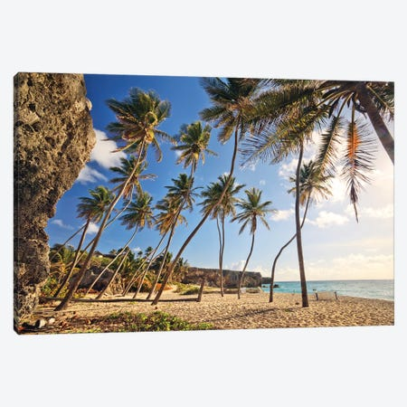 Bottom Bay, Barbados, Caribbean Canvas Print #TEO473} by Matteo Colombo Canvas Print
