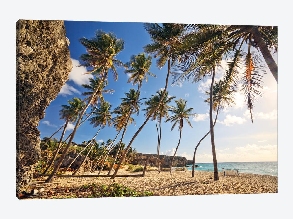 Bottom Bay, Barbados, Caribbean by Matteo Colombo 1-piece Canvas Art Print