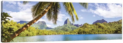 Moorea, French Polynesia Canvas Art Print
