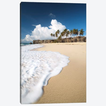 Tropical Beach In Barbados Canvas Print #TEO527} by Matteo Colombo Canvas Artwork