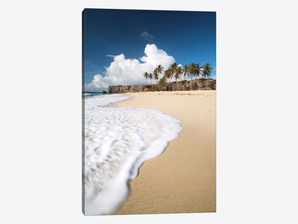 Tropical Beach In Barbados by Matteo Colombo 1-piece Art Print