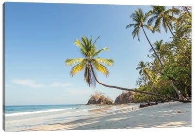 Tropical Beach, Costa Rica Canvas Art Print