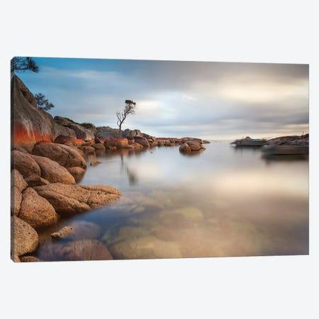 Binalong Bay, Tasmania, Australia Canvas Print #TEO543} by Matteo Colombo Canvas Art Print