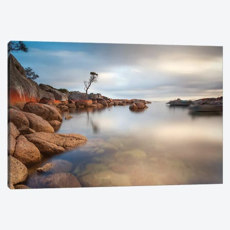 Binalong Bay, Tasmania, Australia Canvas Print #TEO543} by Matteo Colombo Canvas Art Print