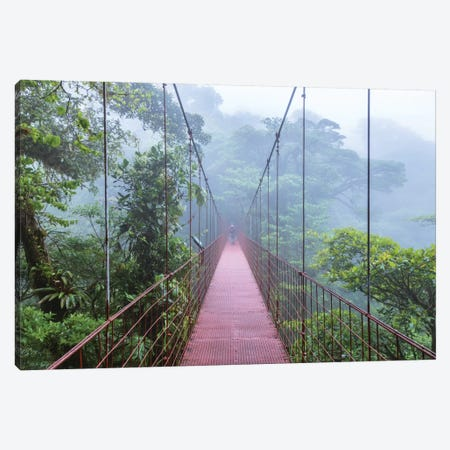 Man On A Suspension Bridge, Monteverde Cloud Forest Reserve, Costa Rica Canvas Print #TEO56} by Matteo Colombo Canvas Art