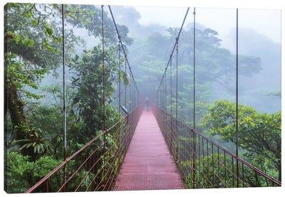 Man On A Suspension Bridge, Monteverde Cloud Forest Reserve, Costa Rica Canvas Print #TEO56