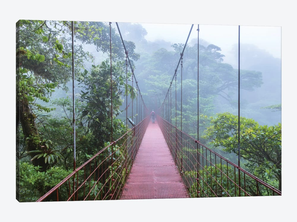 Man On A Suspension Bridge, Monteverde Cloud Forest Reserve, Costa Rica by Matteo Colombo 1-piece Art Print