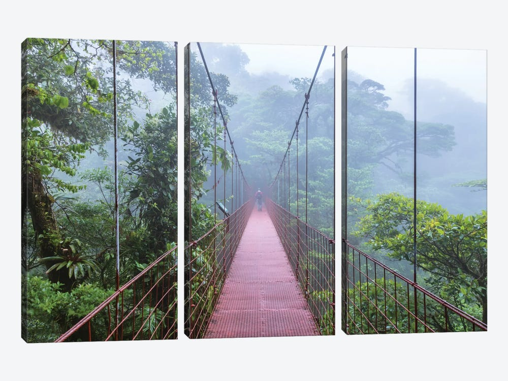 Man On A Suspension Bridge, Monteverde Cloud Forest Reserve, Costa Rica by Matteo Colombo 3-piece Art Print
