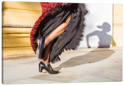 Flamenco Dancer In Seville, Andalusia, Spain Canvas Art Print