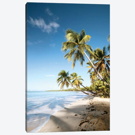 Les Salines Beach In Martinique Canvas Print #TEO593} by Matteo Colombo Canvas Artwork