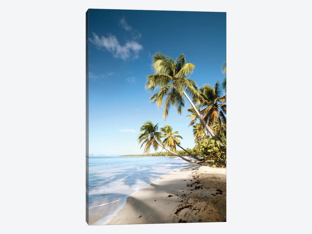 Les Salines Beach In Martinique by Matteo Colombo 1-piece Canvas Art