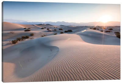 Mesquite Flat Sand Dunes At Sunrise, Death Valley, Death Valley National Park, California, USA Canvas Print #TEO59
