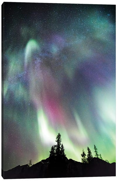 Northern Lights And Milky Way, Canada Canvas Art Print