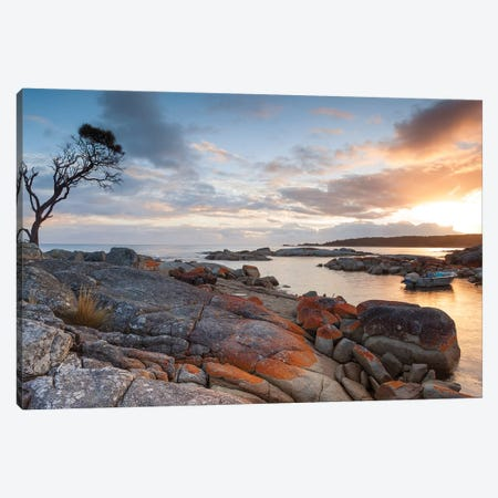 Sunrise Over The Coast Of Tasmania, Australia Canvas Print #TEO638} by Matteo Colombo Canvas Art Print