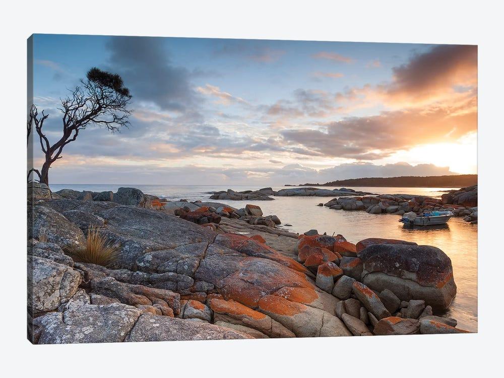 Sunrise Over The Coast Of Tasmania, Australia by Matteo Colombo 1-piece Canvas Art Print
