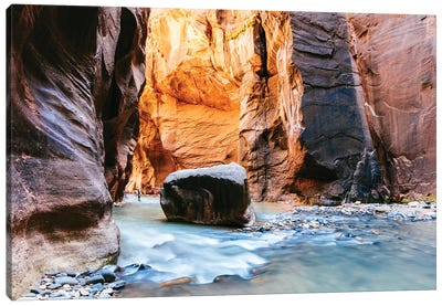 The Narrows, Zion II Canvas Art Print
