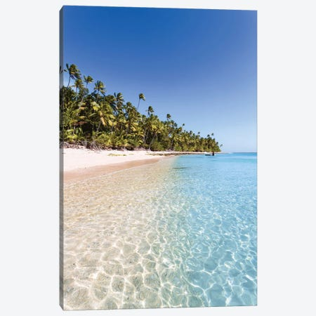 Palm Tree Laden Beach, Republic Of Fiji Canvas Print #TEO68} by Matteo Colombo Canvas Wall Art