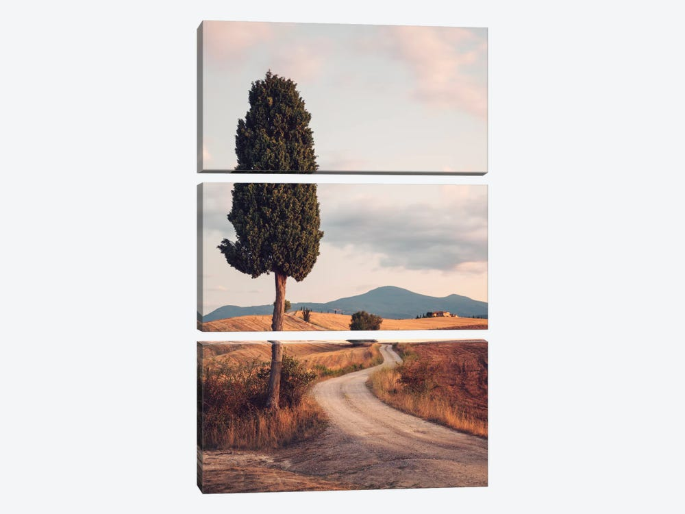 Rural Road With Cypress Tree, Tuscany, Italy by Matteo Colombo 3-piece Canvas Print