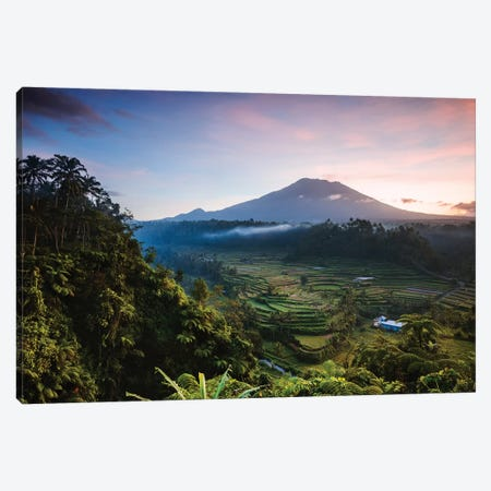 Volcano And Rice Fields, Bali I Canvas Print #TEO751} by Matteo Colombo Canvas Artwork