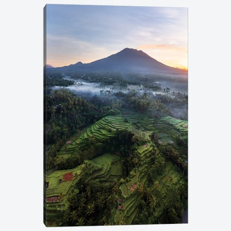 Volcano And Rice Fields, Bali II Canvas Print #TEO752} by Matteo Colombo Canvas Artwork