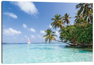 Sail Boat On Tropical Sea, Republic Of Maldives Canvas Art Print