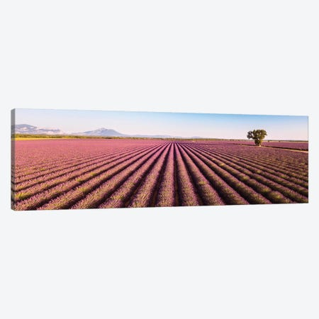 Provence Panorama Canvas Print #TEO766} by Matteo Colombo Canvas Wall Art