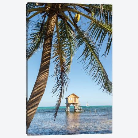 Caribbean Sea, Belize Canvas Print #TEO780} by Matteo Colombo Canvas Art Print