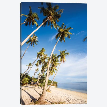 Palm Fringed Beach, Philippines Canvas Print #TEO800} by Matteo Colombo Canvas Wall Art
