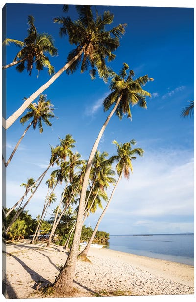 Palm Fringed Beach, Philippines Canvas Art Print
