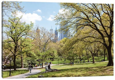 Spring At The Central Park Canvas Art Print