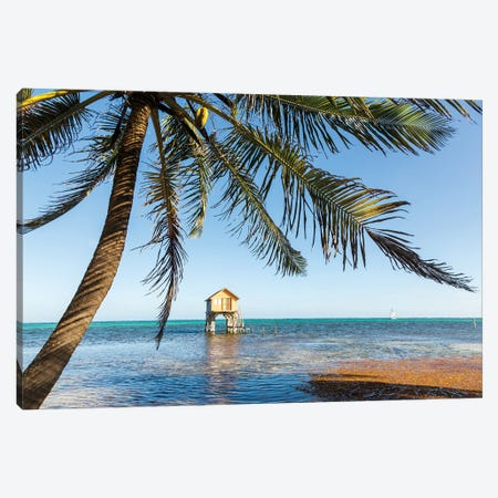 Tropical Vibes, Belize Canvas Print #TEO998} by Matteo Colombo Canvas Art