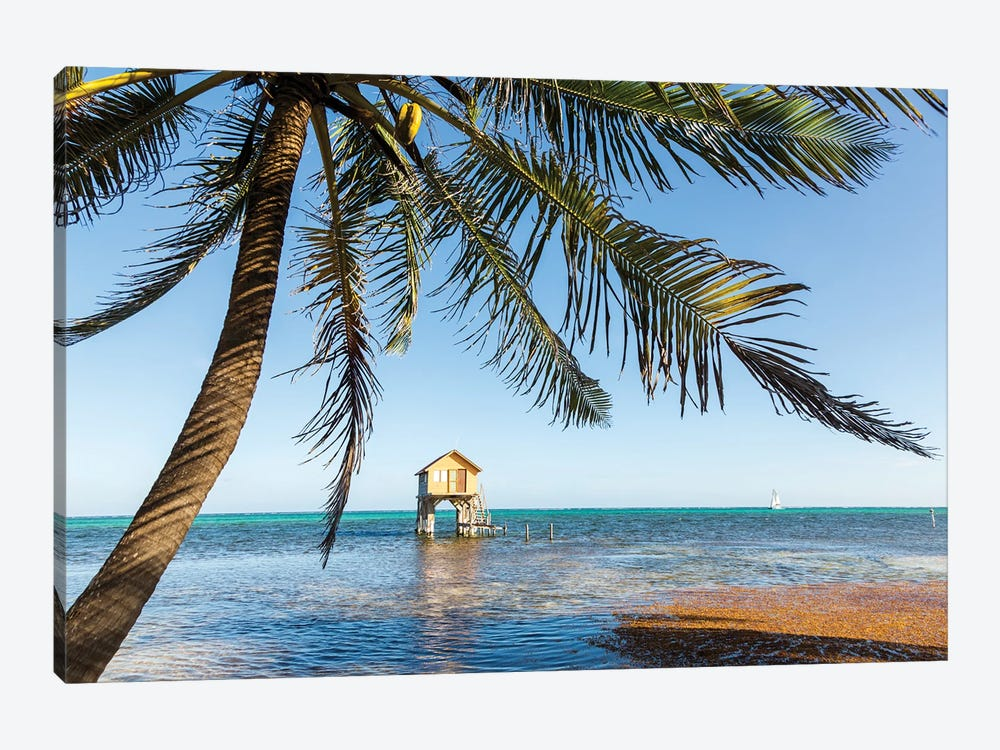Tropical Vibes, Belize by Matteo Colombo 1-piece Art Print