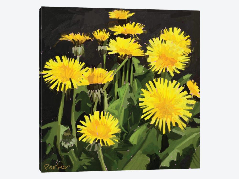 Dramatic Dandelions by Teddi Parker 1-piece Canvas Wall Art