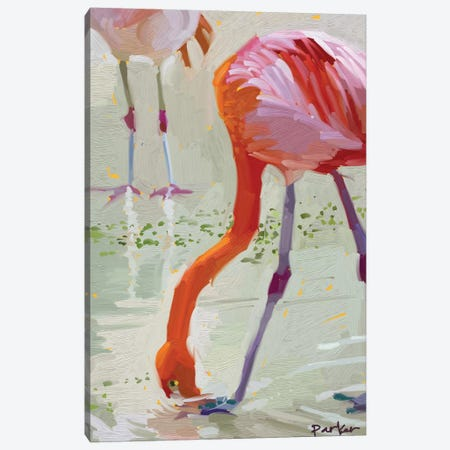 Hungry Flamingo Canvas Print #TEP15} by Teddi Parker Canvas Art Print