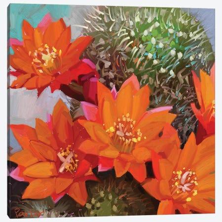 Orange Cactus Canvas Print #TEP19} by Teddi Parker Canvas Wall Art
