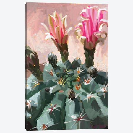 Pink Cactus Canvas Print #TEP23} by Teddi Parker Canvas Print
