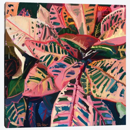 Pink Croton Canvas Print #TEP24} by Teddi Parker Canvas Wall Art