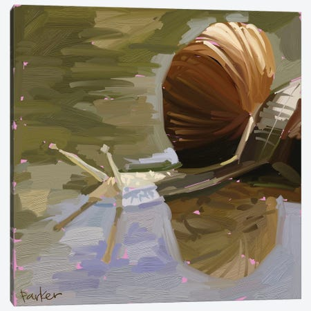 Snail Canvas Print #TEP28} by Teddi Parker Canvas Art Print