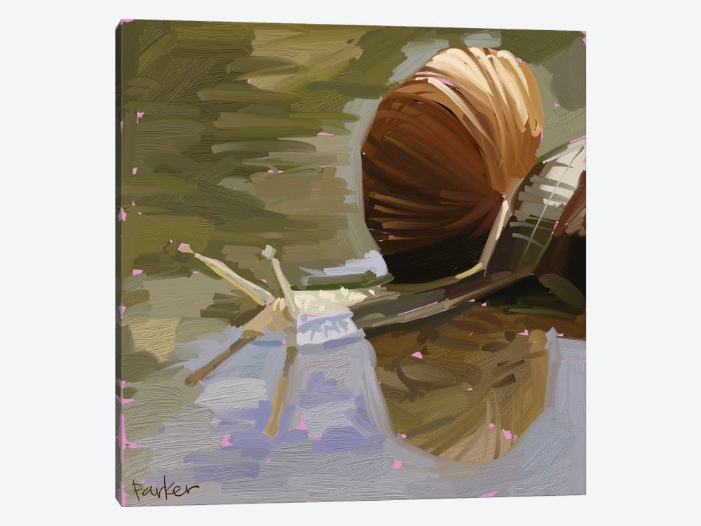 Snail by Teddi Parker 1-piece Canvas Art Print