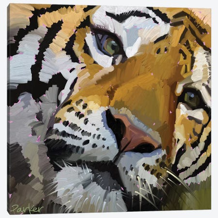Tiger Eye Canvas Print #TEP31} by Teddi Parker Canvas Art