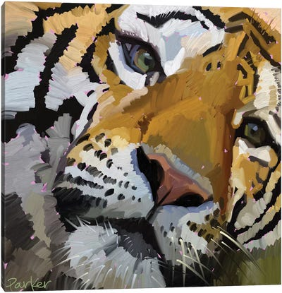 Tiger Eye Canvas Art Print