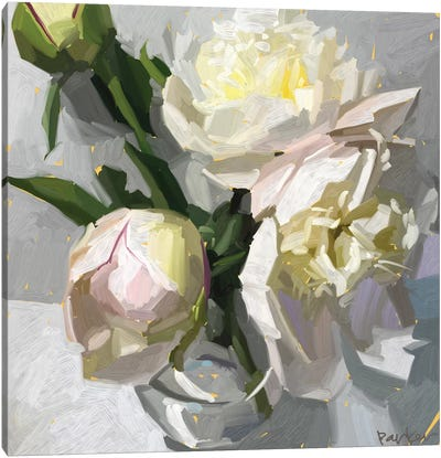 Delicate Peonies Canvas Art Print