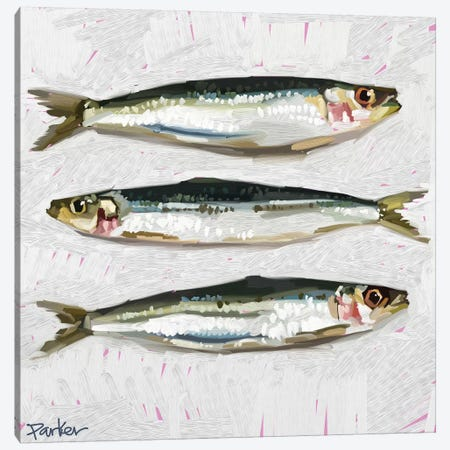 Sardines Canvas Print #TEP39} by Teddi Parker Canvas Artwork
