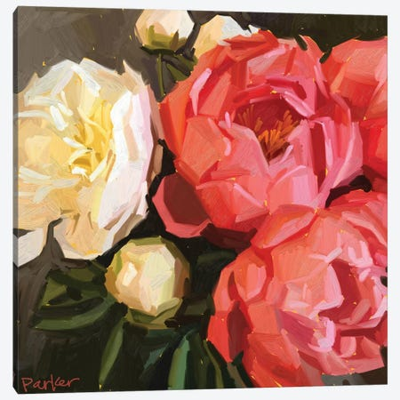 Coral Peonies Canvas Print #TEP41} by Teddi Parker Canvas Art Print
