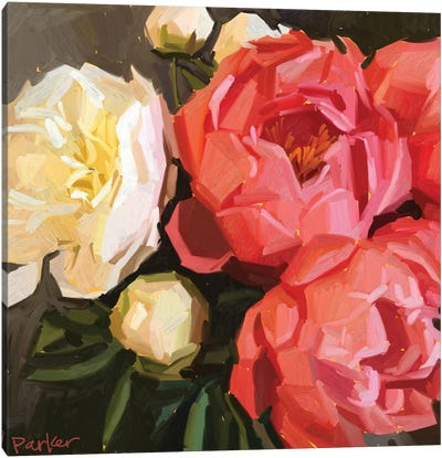 Coral Peonies Canvas Art Print