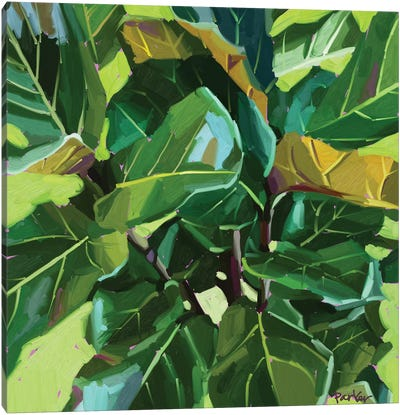 Fiddle Leaf Canvas Art Print