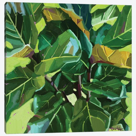 Fiddle Leaf Canvas Print #TEP43} by Teddi Parker Art Print
